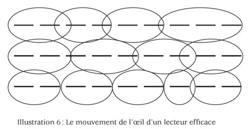 www.lecturerapide.info.mouvement%20de%20l%27oeil3.png